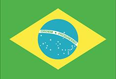 Brazil : Šalies vėliava