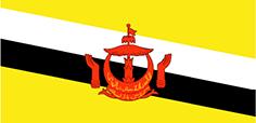 Brunei : Šalies vėliava