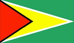Guyana : Šalies vėliava