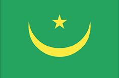 Mauritania : Šalies vėliava
