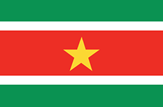 Suriname : Šalies vėliava