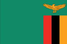 Zambia : Šalies vėliava