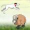 Sheep Jumper - Sheep Jumper