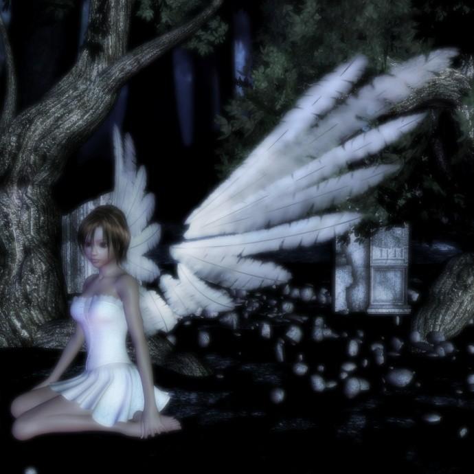 elisabeth52 : seul dans la nuit