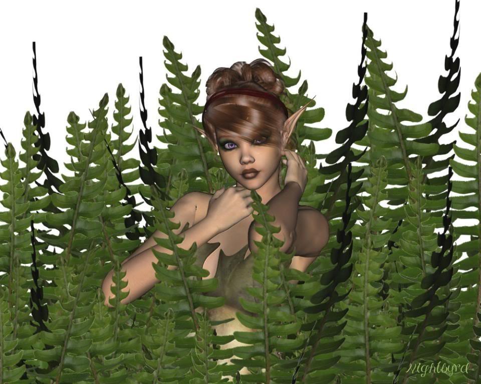 me cacher dans les fougeres