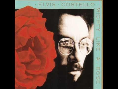 Elvis Costello » Elvis Costello - All Grown Up