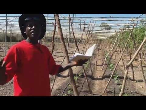 וידאו: המורדים עורפים ראש של בלש מה