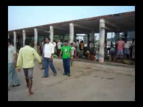 Talsari The Fish Market | Digha